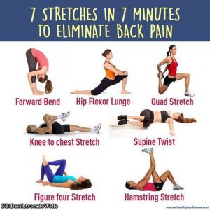 7 stretches in 7 minutes to eliminate back pain st lawrence
